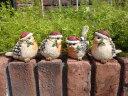 ガーデニング ガーデン クリスマス バードオブジェ キャンドル アンティーク【花遊び】『キラキラ小鳥サンタ4!』