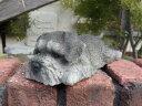 キャット 置物 樹脂 アニマル 動物雑貨 ガーデニング ガーデン【花遊び】『いねむり♪シュナウザー』