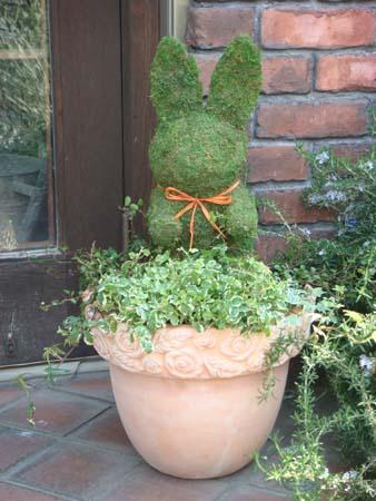モスアニマル 寄せ植え グリーン スタンド プランター カップガーデニング ガーデン ギフト テラコッタ送料無料【花遊び】『寄せ植え♪モスアニマル・ラビット』同梱ご希望でも、別途送料(864円)が発生致します。 モスアニマル 寄せ植え グリーン スタンド プランター カップガーデニング ガーデン ギフト テラコッタ 送料無料