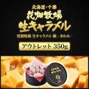花畑牧場 生キャラメル 極 -きわみ- 350g アウトレット【送料込み】