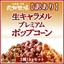 花畑牧場【訳あり】生キャラメルプレミアムポップコーン3種1kgセット