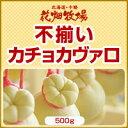 北海道 お土産 花畑牧場 【訳あり】不揃いカチョカヴァロ 500g