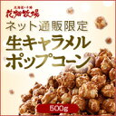 花畑牧場【ネット通販限定】生キャラメルポップコーン 500g
