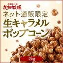 花畑牧場【ネット通販限定】生キャラメルポップコーン 2kg