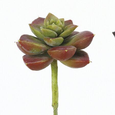 【造花】アスカ/サッカレンテン レッド/A-42180-002【01】【取寄】《 造花(アーティフィシャルフラワー) 造花葉物、フェイクグリーン 多肉植物 》