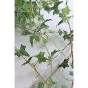 【造花】COVENT/アイビー・ショートバイン /TG-09【04】[12個]《 造花 グリーン アイビー》