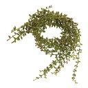 【造花】MAGIQ(東京堂)/ミニグリーンネックレス GREEN 6本/FG003564【02】《 造花 グリーン 多肉植物、プランツ》