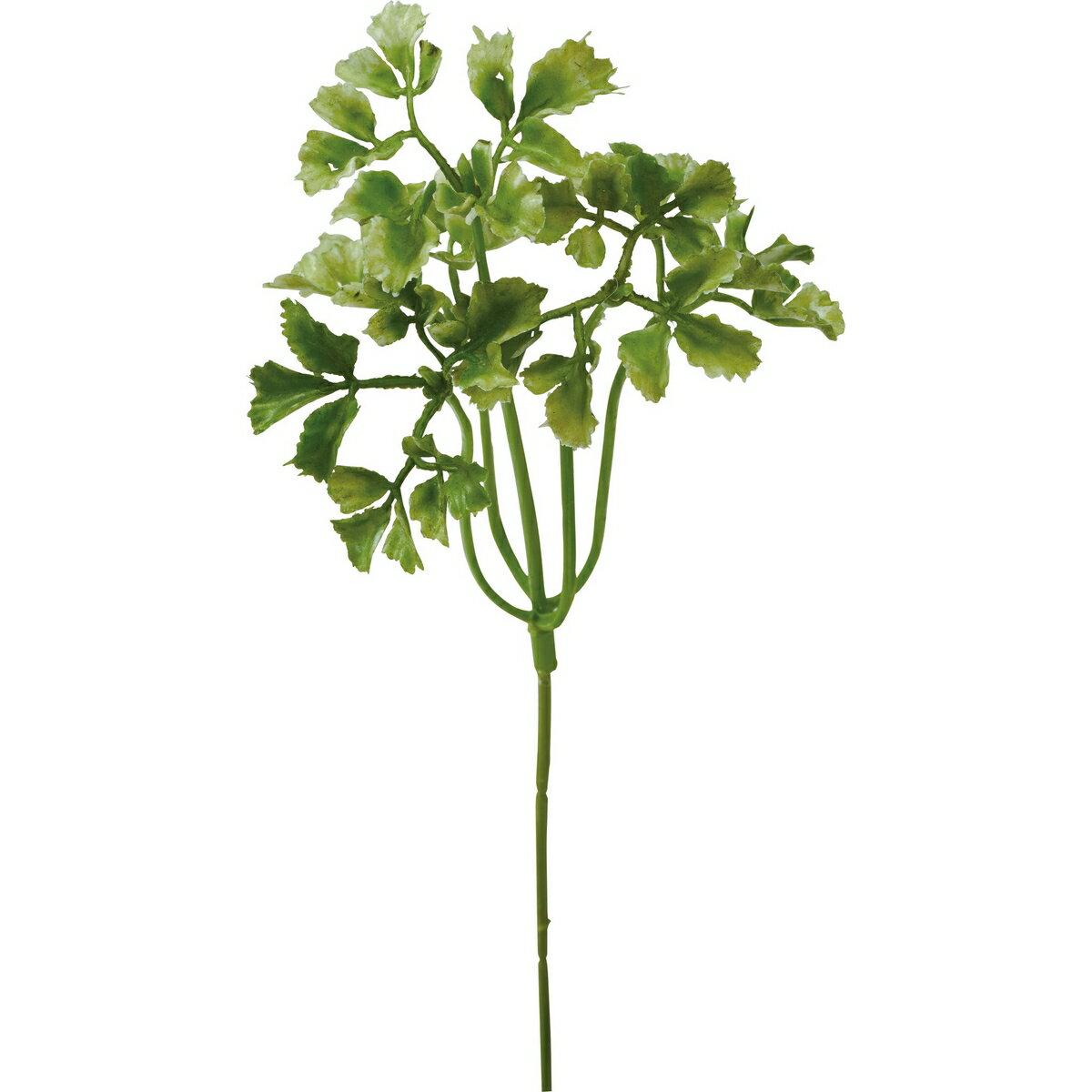 【造花】YDM/パセリピック グリーン/FG4779-GR【01】【取寄】《 造花(アーティフィシャルフラワー) 造花葉物、フェイクグリーン パセリ 》
