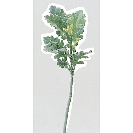 即日★【造花】アスカ/ダスティミラー フロストグリーン/A-40652-51F《造花(アーティフィシャルフラワー) 造花葉物 ダスティミラー》