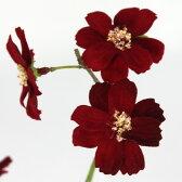 即日★【造花】FIAN/チョコレートコスモス RED/FS0019-RED【00】《 造花 コスモス》