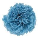 【プリザーブド】フロールエバー/スタンダードカーネーション パウダーブルー 6輪/FL1100-13【01】《 プリザーブドフラワー プリザーブドフラワー花材 カーネーション 》