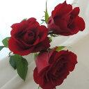 【生花】ケニアローズ 赤50cm(RカリプソorマダムR):12 / 6以降価格【届日限定】[10本]※届日限定:12 / 6以降