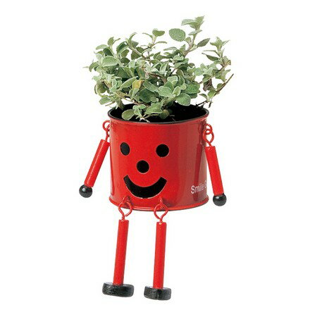 GREENHOUSE/ブリキマンポットS レッド/2786-C-RD【01】【取寄】[4個]《 花器、リース 花器・花瓶 ブリキ・アイアン・アルミ花器 》