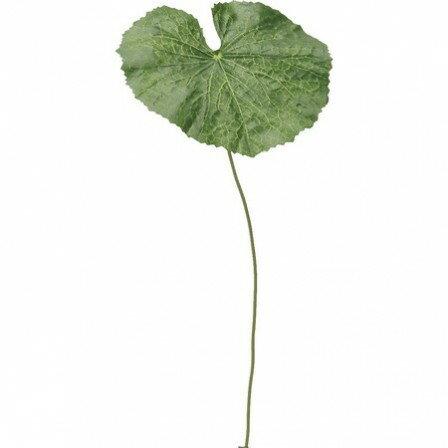 即日★【造花】YDM/ゲイラックス(S) グリーン/FG4090-GR【00】《 造花(アーティフィシャルフラワー) 造花葉物、フェイクグリーン ゲイラックス 》