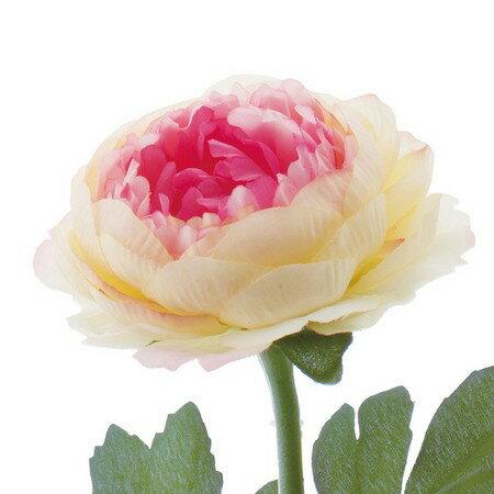 【造花】YDM/ラナンキュラス クリームピンク...の紹介画像2