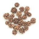 【ドライ】東北花材/スギの実 ナチュラル 約100個/66020【02】《 プリザーブドフラワー 花材ナッツ(木の実)&フルーツ木の実 》