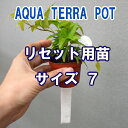 ●st【観葉】アクアテラポットリセット用苗規格7用全8種