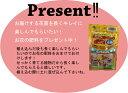 【送料無料】季節の花苗 花色ミックス20ポットセ...