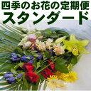 四季のお花の定期便【送料込み】スタンダード