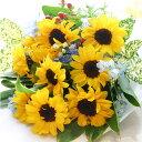 【送料無料】【父の日 花 プレゼント】元気が出る夏の花、ひま...
