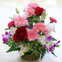 【フラワーアレンジメント】ハニーハニー【誕生日や発表会、記念日のお祝いに/出産祝い、新築祝いに/送別