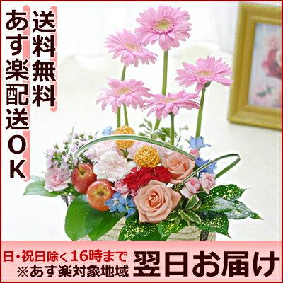 ガーベラ pop'nアレンジ(フラワーアレンジメント)【あす楽対応 送料無料】/即日発送 …...:hanakikyo:10000293