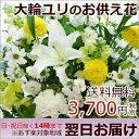 【送料無料】【お供え 花 あす楽対応】大輪 白ユリ お供え花(フラワーアレンジメント) お盆 墓参り