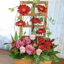 赤いガーベラの花が主役!高さのあるトレリスを使ったフラワーア...