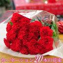 誕生日 花束 ギフト 赤いカーネーション20本の花束 送料無料 記念日 結婚記念日 お祝い