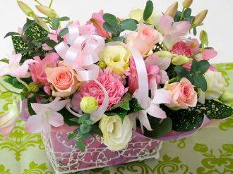 花粉紅色生日插花花束花卉禮品插花鮮花花卉禮品安排華麗 — — 花禮品 hanataba 花祝福祝賀可愛雨 g.花丘比特成員店航運航運包括雪絨花花車間