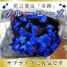 青いバラ ブルーローズの花束 好きな本数で注文【5本以上からの注文受付】 ベンデラブルー 青い バラ 青バラ 青い薔薇 青薔薇 誕生日 花 ギフト 花贈る 花宅配
