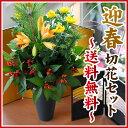 Sho_kiri04