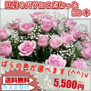 花ことばの⇒色が選べるバラの花束(*^_^*)【シーン】誕生日・記念日・発表会・プレゼント・女性・結婚祝い・お祝い・お見舞いおすすめ・送別