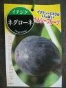 【イチジク苗・ネグローネ】5号ポット苗・ヘルシー果樹