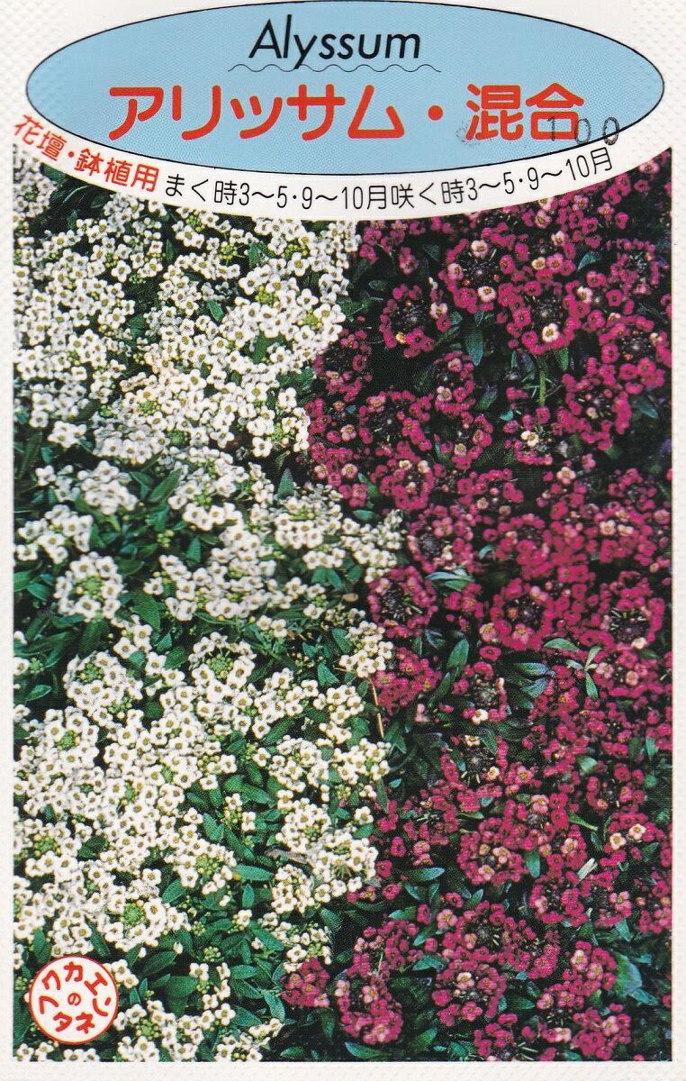 アリッサム混合種子福花園種苗
