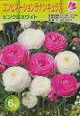 コンビネーションラナンキュラスピンク&ホワイト 6球【秋植え球根】花の大和