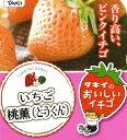 桃薫(とうくん)【イチゴ苗】3号ポットタキイ種苗...