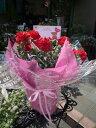 母の日 プレゼント 母の日ギフト 母の日 送料無料 真っ赤なカーネーション鉢植え