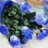 TrueBlueRoseブルーローズの花束【常温便】(【クリスマス・誕生日勤労感謝の日・いい夫婦の日 】)