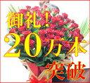還暦祝い 60本のバラ 《大きさが違います!60cmのバラ》 バラの花束 還暦祝い 母 女性 誕生日プレゼント バラ 花束 還暦 祝い 花 ギフト フラワー ギフト 還暦の花 一生に一度のプチ贅沢なプレミアムローズ♪ 本州は 送料無料【楽ギフ_包装】【smtb-TD】