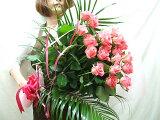 バラの花束 バラ 20本 花束 本州は  フラワーギフト 誕生日プレゼント 女性 花 バラ 【楽ギフ包装】【smtb-TD】