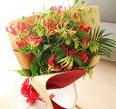 花束グロリオサ10本誕生日/開店祝い/花/開業祝い/還暦祝い