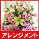 楽天花束・バラ・花卸販売サンモクスイフラワーギフト 四季の彩り フラワーアレンジメントか花束かスタイルをお選び下さい