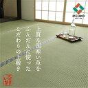 純国産 い草 上敷き 上質ない草で作った カーペット 双目織 『白浜』  江戸間6畳(約261×352cm)