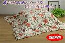 【日本製 こたつ布団】国産!軽くてあったか 洗えるこたつ薄掛ふとん 長方形