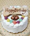 【お肉のケーキ】愛犬の腸内環境を整える乳酸菌◎生乳100%ヨーグルト使用♪無添加お誕生日・お祝いフードケーキ『ハッピーミート』