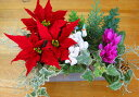 【ミニトレー寄せ植えのみ・入れ替え用】ミニ花はなフレームのクリスマスアレンジ寄せ植え*静かな森で*寄せ植えクリスマス