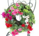 楽天寄せ植えランキング1 位 常連!!【ガーデンシクラメンのハンギング*リング】秋 冬 春までの寄せ植え ギフト 通販
