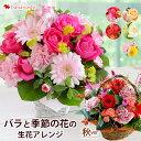バラと季節の花 おまかせ生花アレンジ Mサイズ フラワーアレ...