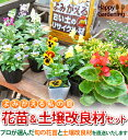 [3,000 yen postage Komi Komi only plan] a soil improvement materials set [cultivation set] that it becomes garden - Let's Re gardening  flower seedling (entrust you) 16 of me who revive and old soil   [transplantation] [RCPnewlife] [SS10P03mar13] [comfortable  _ Messe]
